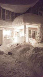 Buffalo snowstorm image