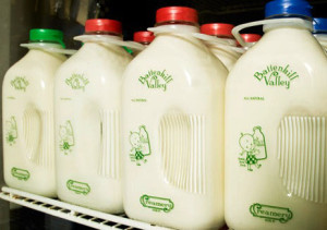 Battenkill bottled milk